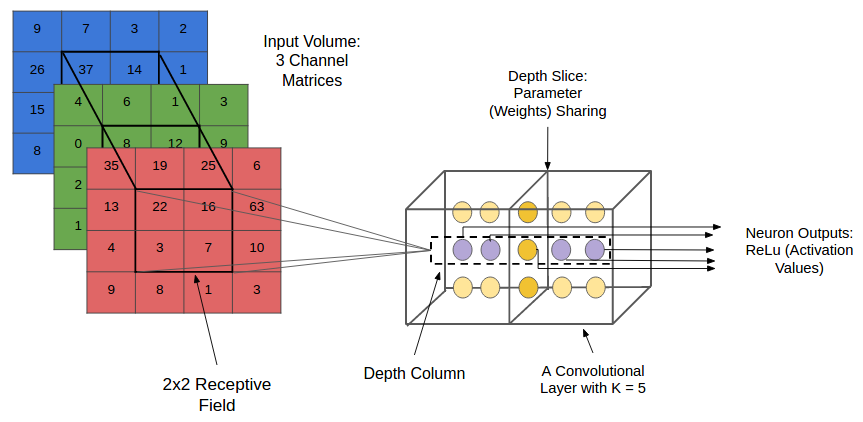 Convolutional Neural Networks (CNNs): An Illustrated